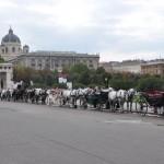 Paardenwagens