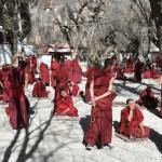 Boedistische monniken debatteren
