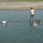 Ollie, onze huisolifant in Sapana lodge Chitwan, even wassen