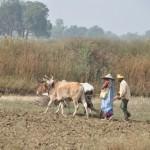 Onderweg naar Varanasi, country side India