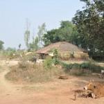 Onderweg naar Varanasi, een van de vele boerderijtjes
