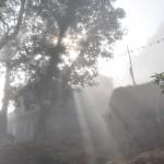's Ochtends in Bandipur