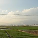 Yunnan groenten kweek gebied