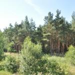 De omgeving van de camping