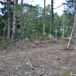 Hill of Crosses Hiiumaa